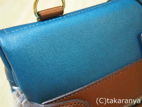 このターコイズブルーの色がむっちゃ綺麗