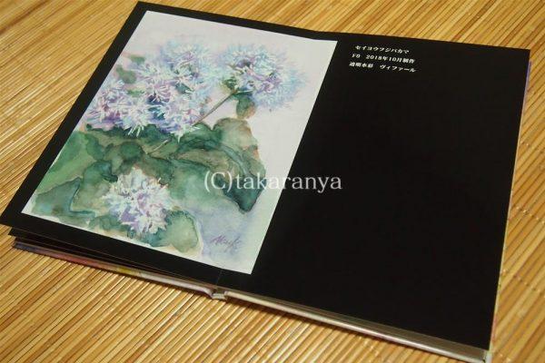 181111mybook-fullflat26